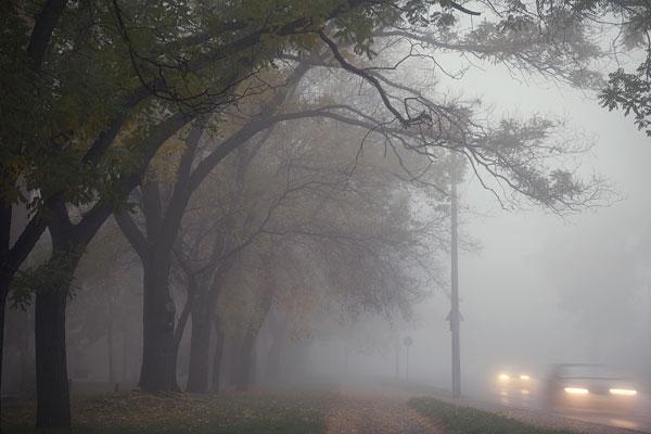Info-smog